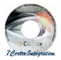 7Cortex Integration enterprise Web 3.0 - Business on demand -par Groupe de Travail et par Mois